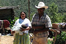 Soil work in Mexico